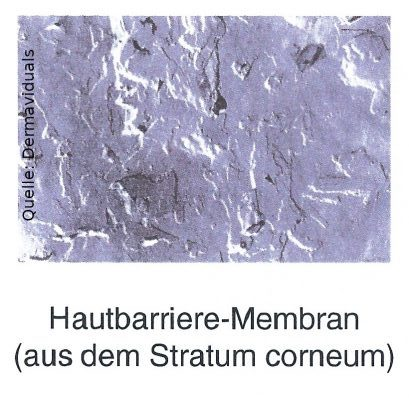 Kosmetikstudio Heilbronn gesunde Haut